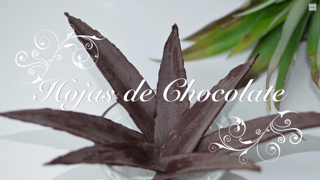 Foto de Hojas de Chocolate